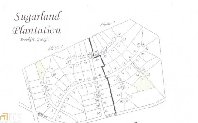 158 Sugarland Blvd, Brooklet, GA 30415 (MLS #8618862) :: The Heyl Group at Keller Williams
