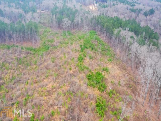 0 Doc Perry Rd Tract 2, Newnan, GA 30263 (MLS #8620149) :: The Heyl Group at Keller Williams