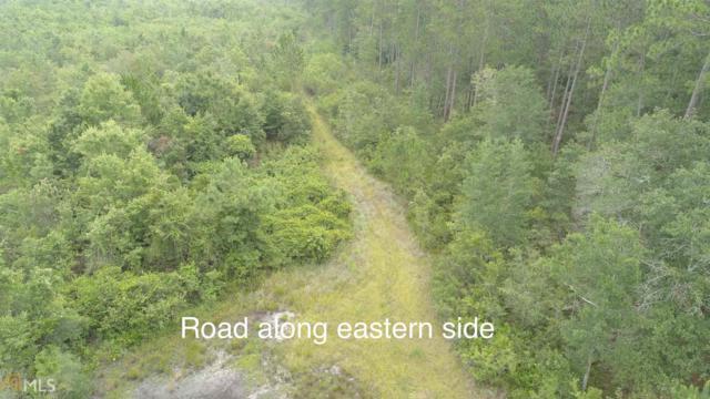 0 Highway 23, Reidsville, GA 30453 (MLS #8624876) :: Bonds Realty Group Keller Williams Realty - Atlanta Partners