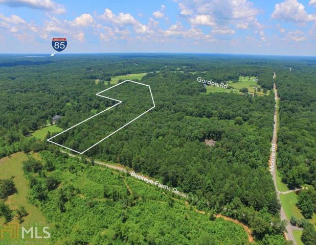 4 Buckeye Farms Dr, Moreland, GA 30259 (MLS #8625981) :: The Heyl Group at Keller Williams