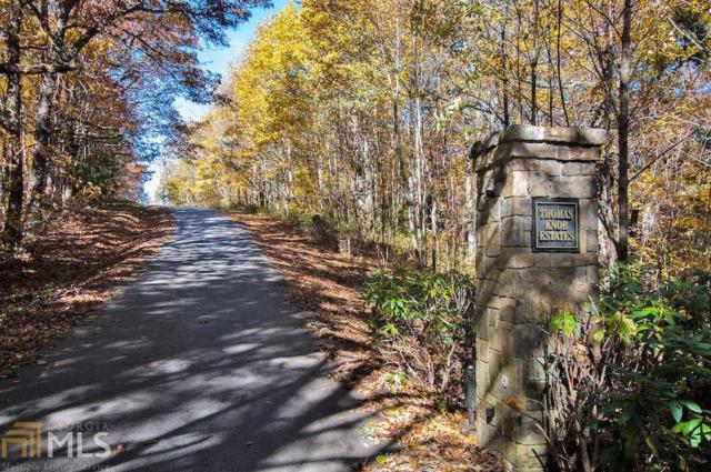37 Thomas Knob Trl, Scaly Mountain, NC 28775 (MLS #8628042) :: The Heyl Group at Keller Williams