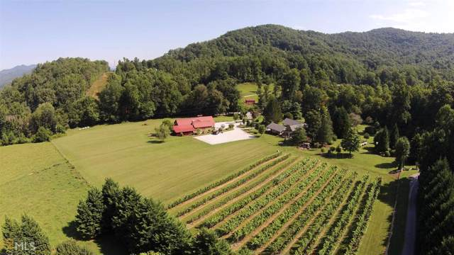 550 Black Branch Rd, Rabun Gap, GA 30568 (MLS #8646407) :: The Realty Queen Team