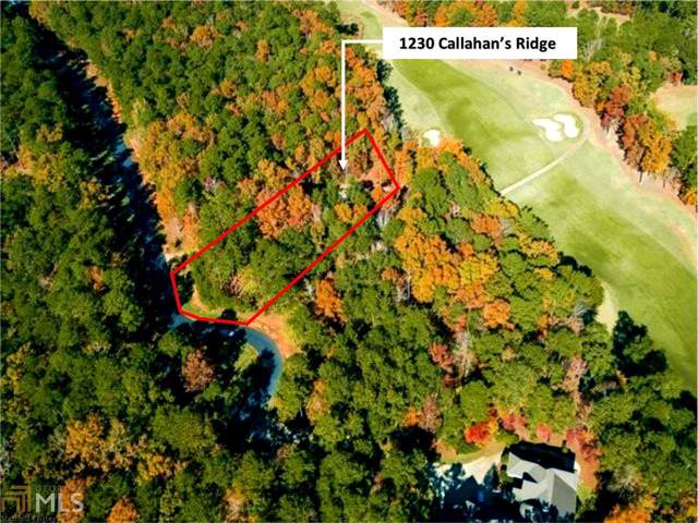 1230 Callahans Ridge, Greensboro, GA 30642 (MLS #8683509) :: Bonds Realty Group Keller Williams Realty - Atlanta Partners