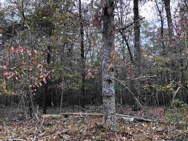 0 Old Deer Path Way, Cleveland, GA 30528 (MLS #8688392) :: Bonds Realty Group Keller Williams Realty - Atlanta Partners