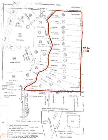 0 Halls Valley Rd, Trion, GA 30753 (MLS #8699527) :: Buffington Real Estate Group