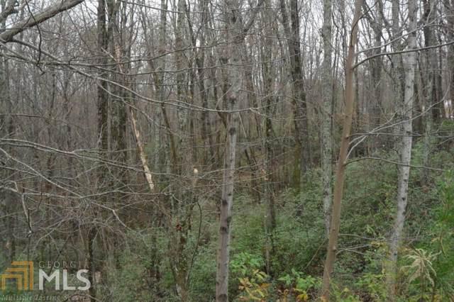159 Raspberry Ln, Clarkesville, GA 30523 (MLS #8701339) :: Rettro Group