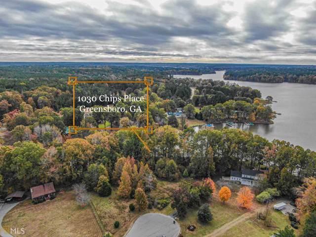 1030 Chips Pl, Greensboro, GA 30642 (MLS #8702340) :: The Heyl Group at Keller Williams