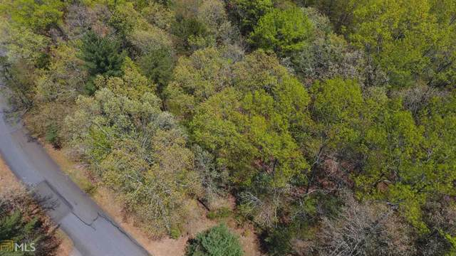 Lot 32 Turkey Knob Estates Lot 32, Ellijay, GA 30540 (MLS #8704243) :: Rettro Group