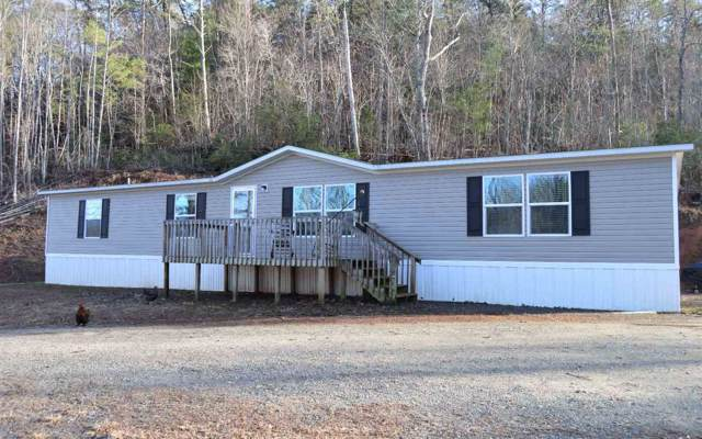 994 Hog Creek Rd, Hiawassee, GA 30546 (MLS #8719688) :: Team Cozart