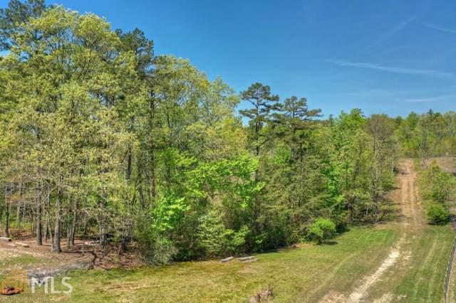 TR 2 Carrington Farm Rd, Mineral Bluff, GA 30559 (MLS #8724884) :: Buffington Real Estate Group