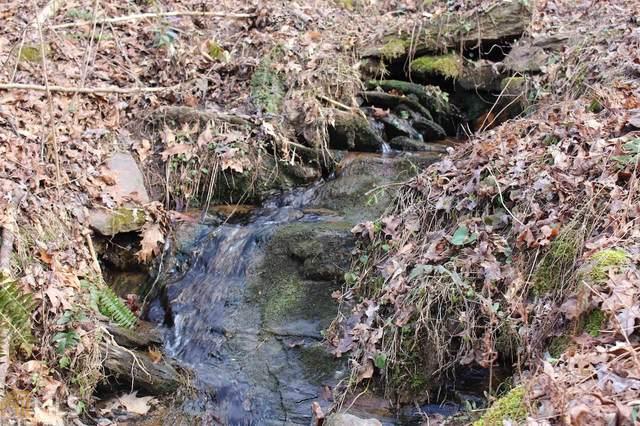 0 River Bridge Trl, Cornelia, GA 30531 (MLS #8730792) :: AF Realty Group