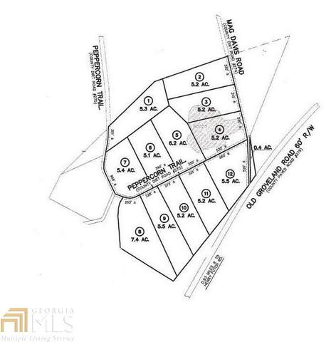0 Peppercorn Trl Lot 7, Pembroke, GA 31321 (MLS #8740798) :: RE/MAX Eagle Creek Realty