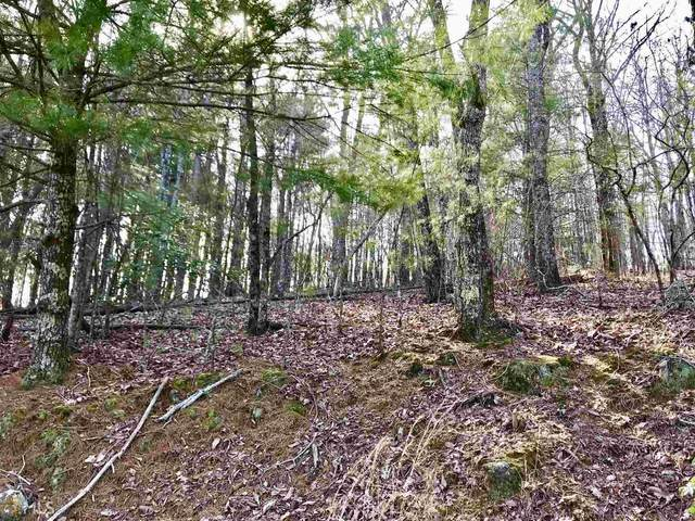 0 Squirrel Hunting Rd #4, Ellijay, GA 30536 (MLS #8740900) :: Team Reign