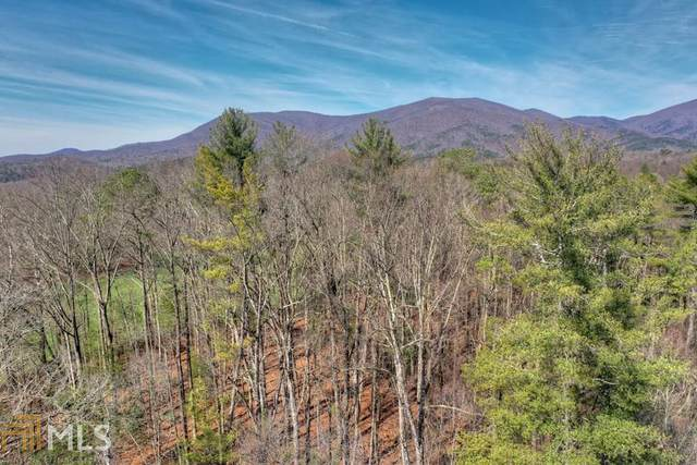 0 New Liberty Trl Lot 1, Ellijay, GA 30536 (MLS #8741405) :: The Heyl Group at Keller Williams