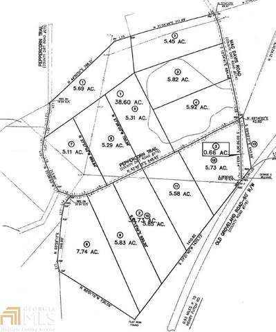 0 Peppercorn Trl Lot 1, Nevils, GA 31321 (MLS #8743322) :: The Heyl Group at Keller Williams