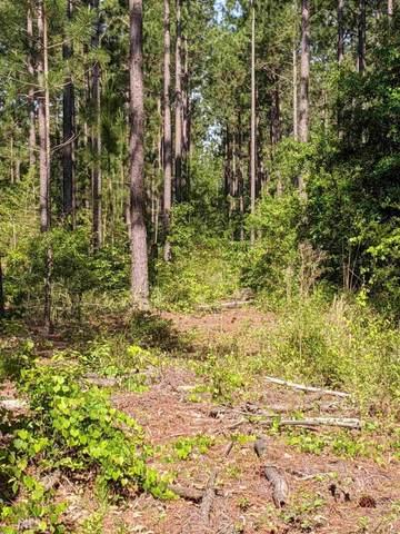 0 Butler Mill Rd, Reynolds, GA 31076 (MLS #8789049) :: Rich Spaulding