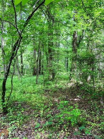 0 Old Tennessee Rd, Franklin, GA 30217 (MLS #8796180) :: Rettro Group