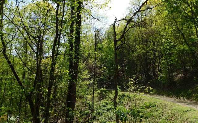 0 Hidden Springs Dr Lot 17, Brasstown, NC 28902 (MLS #8796260) :: The Heyl Group at Keller Williams