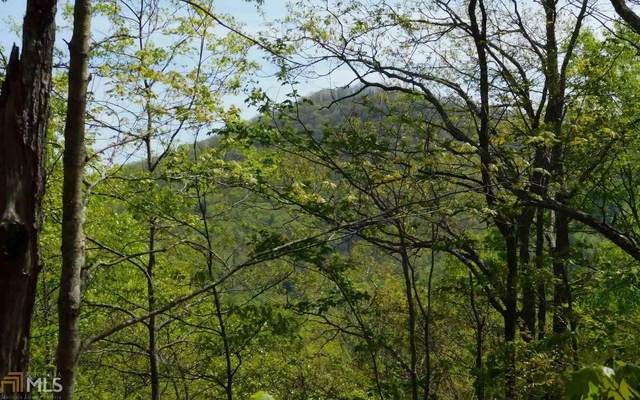 0 Panther Trce Lot 24, Brasstown, NC 28902 (MLS #8796265) :: The Heyl Group at Keller Williams