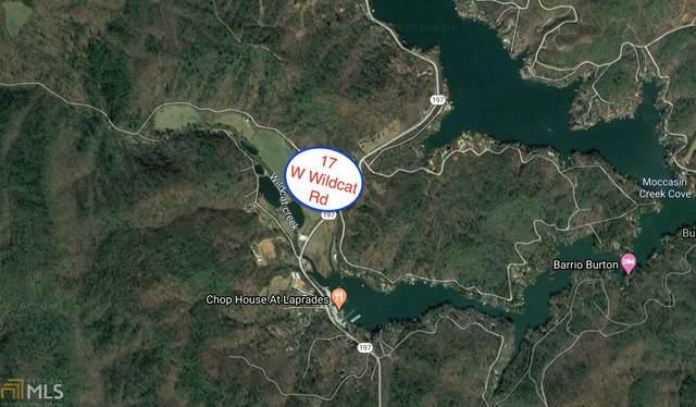 17 W Wildcat Rd, Clarkesville, GA 30523 (MLS #8796776) :: Team Cozart