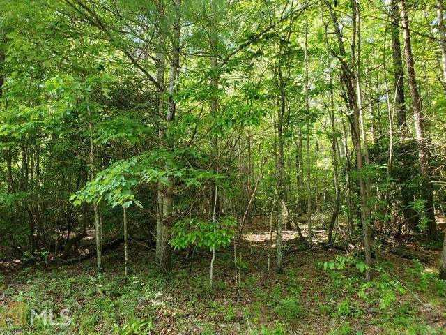 0 Tanner Cove Rd Tract 3, Blairsville, GA 30512 (MLS #8799503) :: The Heyl Group at Keller Williams