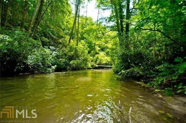 300 Ramblin River, Clarkesville, GA 30523 (MLS #8805652) :: The Heyl Group at Keller Williams