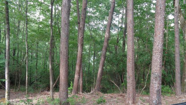 TR 3 Burton View Ln Lot 3, Clarkesville, GA 30523 (MLS #8813914) :: AF Realty Group