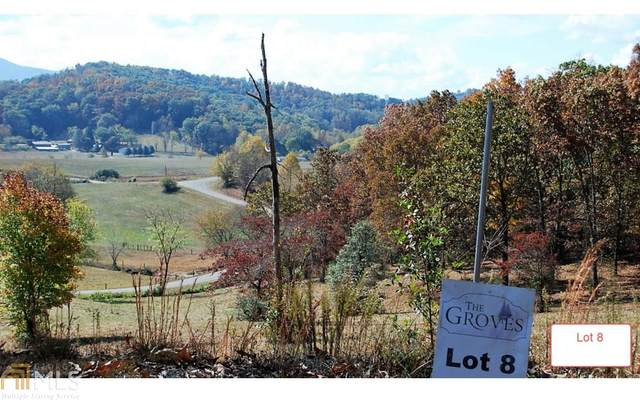 LT8 Jack Groves Lane, Hayesville, NC 28904 (MLS #8817121) :: The Realty Queen & Team