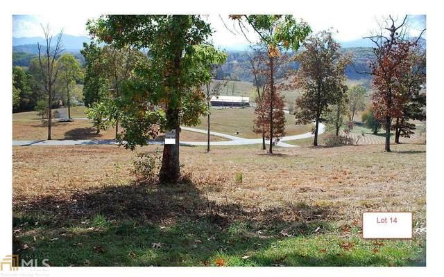 LT14 Jack Groves Lane, Hayesville, NC 28904 (MLS #8817136) :: The Realty Queen & Team