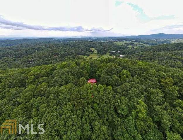 2000 Tipton Springs Rd, Morganton, GA 30560 (MLS #8836924) :: The Durham Team