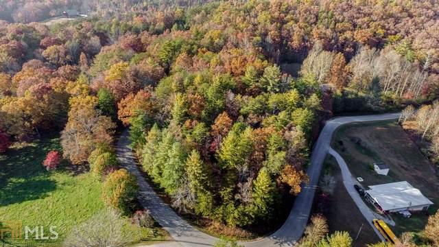 0 Pack Creek Rd 1.44 Ac, Blue Ridge, GA 30513 (MLS #8848927) :: Rettro Group