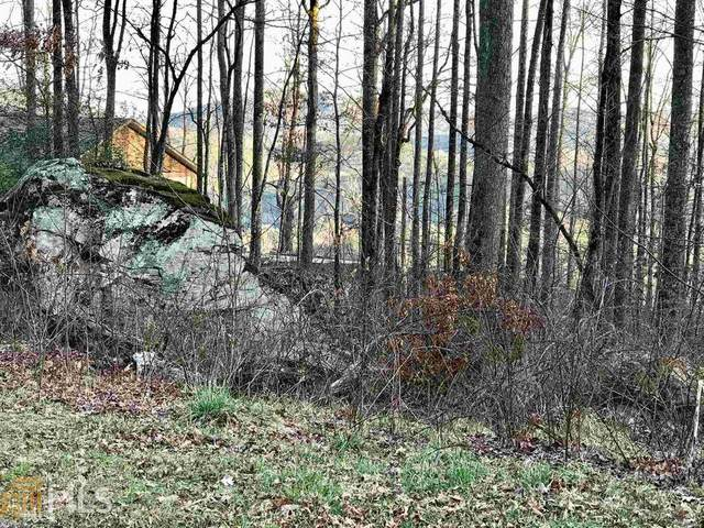 0 Black Rock Estates Lot 4, Clayton, GA 30525 (MLS #8851917) :: Athens Georgia Homes