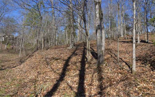 0 Bell Creek Estates Lot 35, Hiawassee, GA 30546 (MLS #8855066) :: Team Reign
