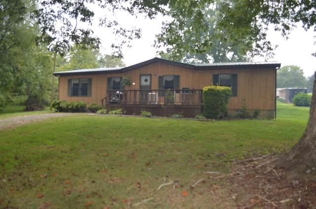 64 Cheetah Ln, Hayesville, NC 28904 (MLS #8858883) :: The Durham Team