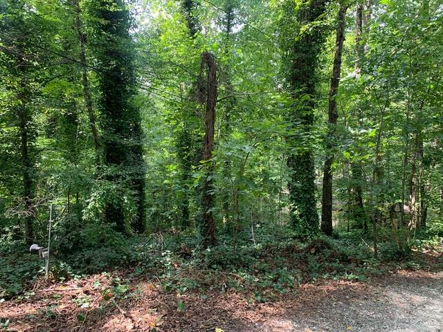 1439 Conway Rd, Decatur, GA 30030 (MLS #8859876) :: Tim Stout and Associates