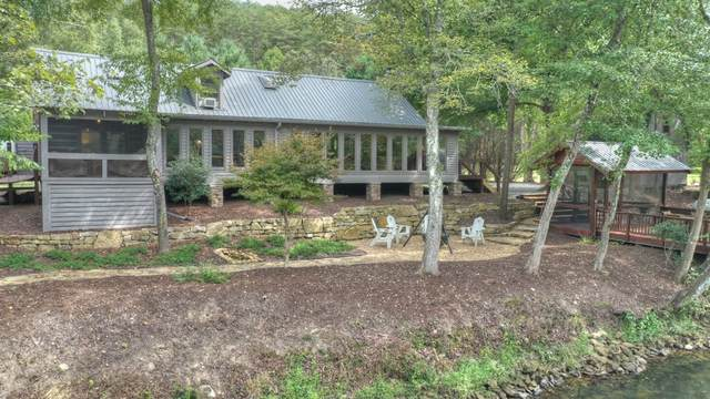 870 Indian Trace, Mineral Bluff, GA 30559 (MLS #8859910) :: Rettro Group