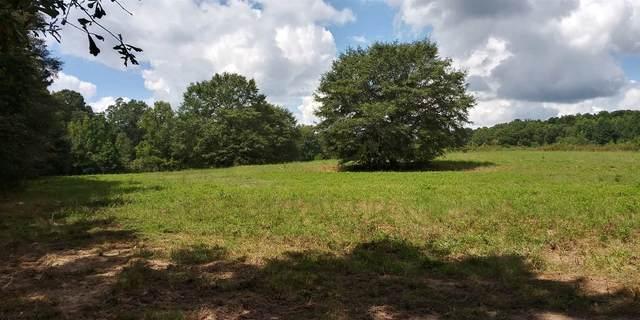 000 E Fletcher Ford Rd, Fayetteville, GA 30215 (MLS #8860380) :: RE/MAX Eagle Creek Realty