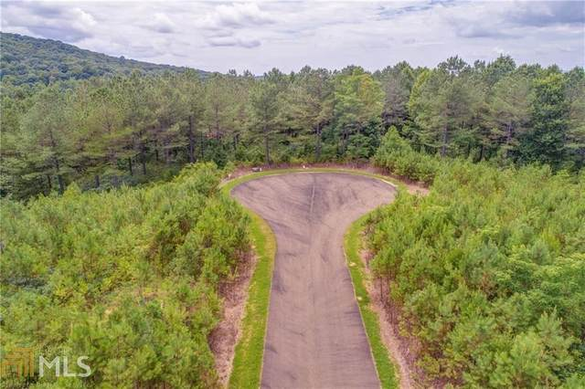 10 Eastview Trl, Ellijay, GA 30540 (MLS #8861402) :: Team Cozart