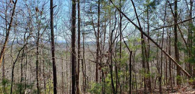 1698 Shade Tree Dr, Talking Rock, GA 30175 (MLS #8864159) :: Scott Fine Homes at Keller Williams First Atlanta