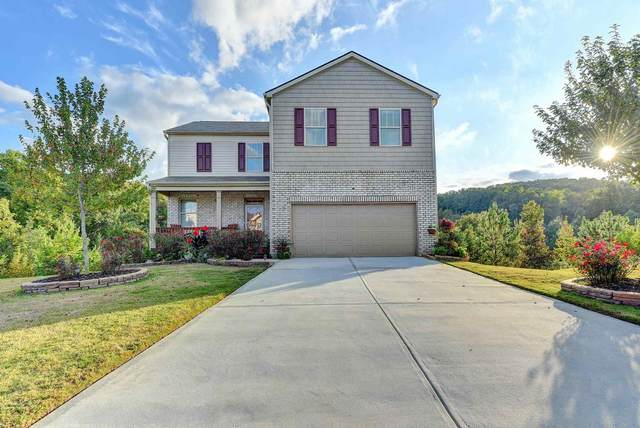 3126 Silver Dale Ln, Gainesville, GA 30507 (MLS #8864688) :: Tim Stout and Associates