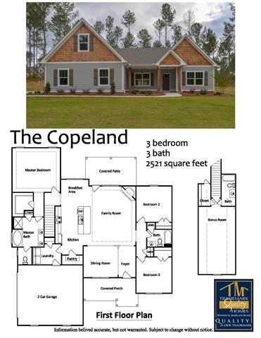 1702 Cook Rd Lot 3, Zebulon, GA 30295 (MLS #8864710) :: Rich Spaulding