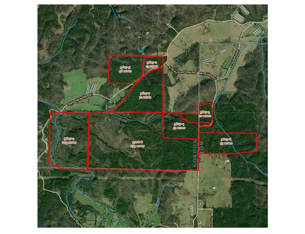 0 Slate Mine Rd 9607-1, Fairmount, GA 30139 (MLS #8869546) :: Regent Realty Company