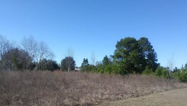 0 Reynolds Rd Lot 7 & 8, Folkston, GA 31537 (MLS #8873618) :: Houska Realty Group