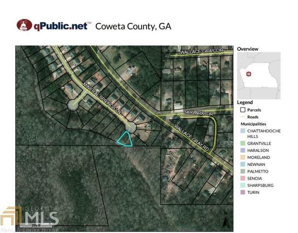 0 Mineral Springs Ln, Newnan, GA 30263 (MLS #8875857) :: Scott Fine Homes at Keller Williams First Atlanta