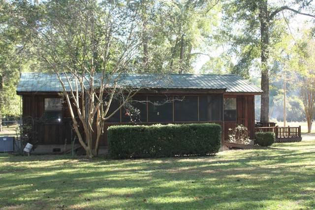 94 Josephine Overlook, Georgetown, GA 39854 (MLS #8876200) :: AF Realty Group