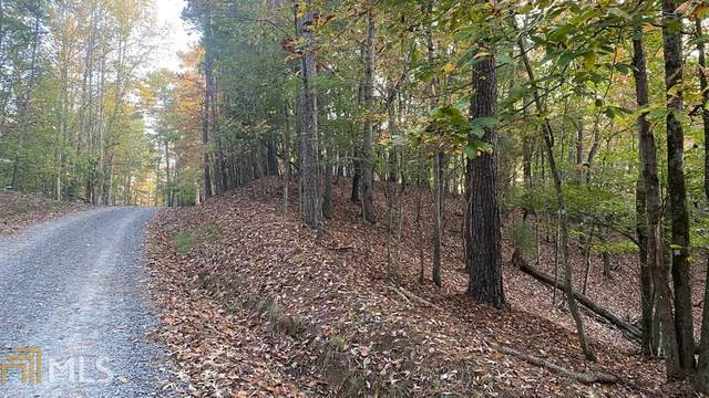 0 Gunite Cir Lot 2860, Ellijay, GA 30540 (MLS #8876229) :: Tim Stout and Associates