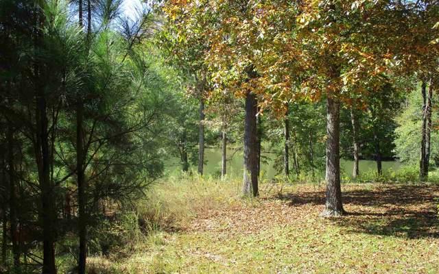 79 Lakeside Drive #15, Roanoke, AL 36274 (MLS #8879280) :: Tim Stout and Associates