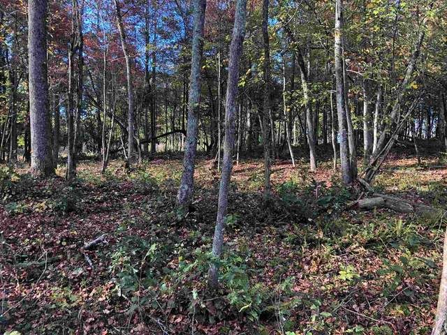 0 Sunset Cv Lot 4, Ellijay, GA 30540 (MLS #8879529) :: Rettro Group