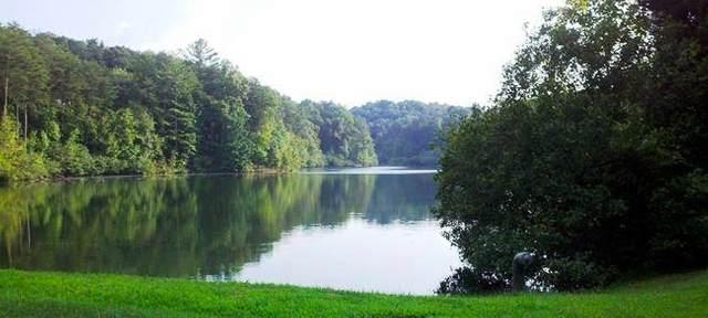 0 Cedar Hollow Rd, Cleveland, GA 30528 (MLS #8886038) :: Keller Williams Realty Atlanta Classic