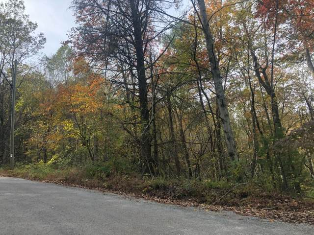 0 Double Knob Lot 6, Ellijay, GA 30540 (MLS #8887700) :: AF Realty Group